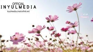 Teresa - 꽃가루