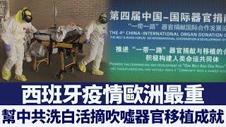 幫中共洗白活摘 西班牙疫情歐洲最重|新唐人亞太電視|20200504
