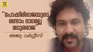Aju Varghese Talks About Madhuraraja    Mammootty   Vysakh   Peter Hein