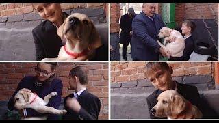 В.Путин подарил щенков лабрадора двум российским детям