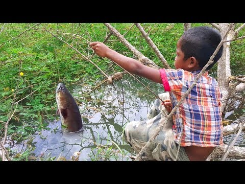 Amazing Smart Boy Goes Fishing To Survive by Himself - How to Fishing With Free Line Fishing