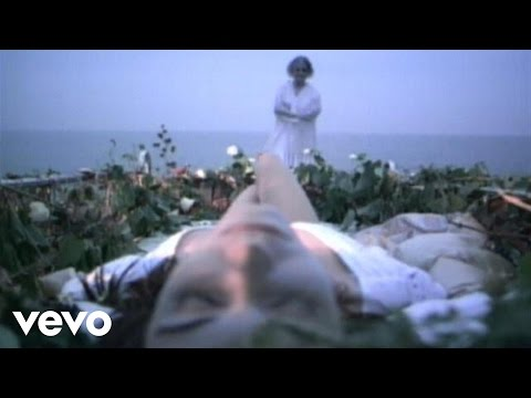 Manic Street Preachers - Roses In The Hospital (Video)