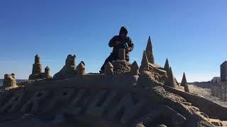 Lewes Polar Bear Plunge Sand Sculpture 2018
