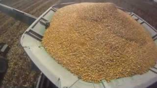 john deere 9770 combine case ih 305 magnum in corn harvest fall 2010