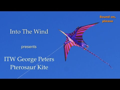 Into The Wind George Peters  Pterosaur Kite