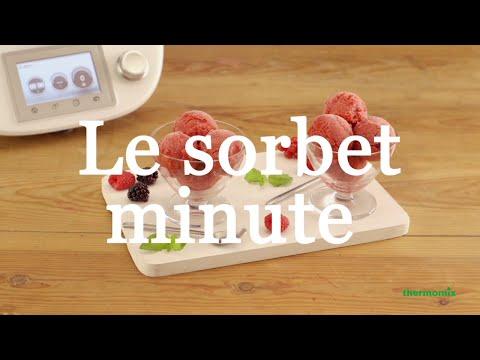 Le sorbet aux fruits, recette au Thermomix ® TM5