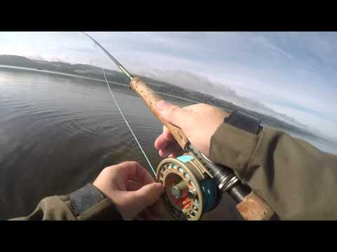 River Leven And Estuary Fishing September 2015