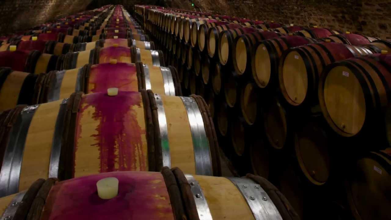 Burgundy Wine Behind the Bottle - Wine Oh TV
