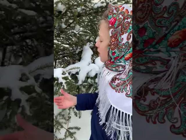 Изображение предпросмотра прочтения – МирраБлинова читает произведение «Чародейкою зимою» Ф.И.Тютчева