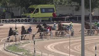 Vidéo de la course PMU PREMI ARIANY