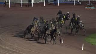 Vidéo de la course PMU PRIX D'ARMENTIERES