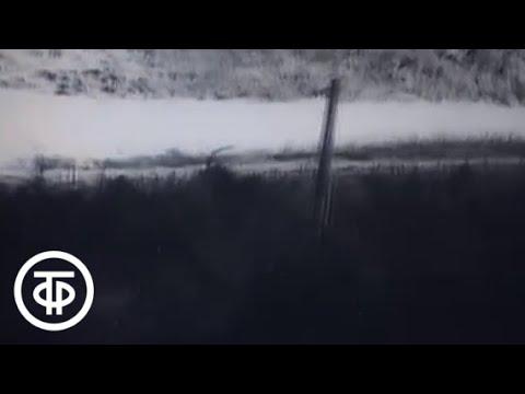 Стратегия победы. Фильм 5. Кавказский щит (1984)
