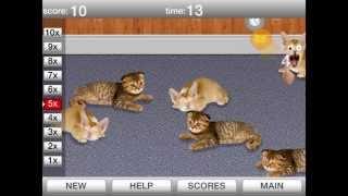 Забавные спящие котики флеш игра