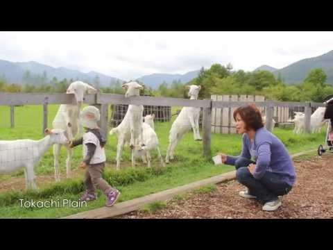 [Khám phá Nhật Bản] Hokkaido