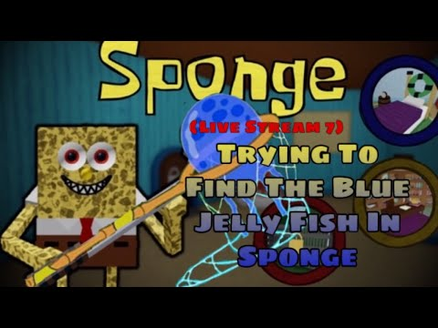 Trying To Find The Blue Jellyfish In Sponge (Live Stream 7)