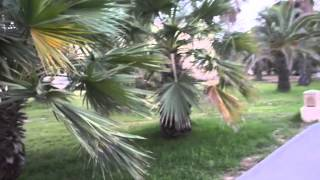 VLOG: путешествие в Тунис(Оставляйте комментарии, запросы, подписывайтесь. Ваша Катя), 2012-07-28T13:34:18.000Z)