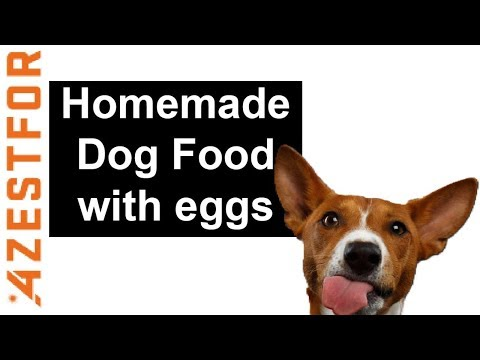 homemade-dog-food-with-eggs