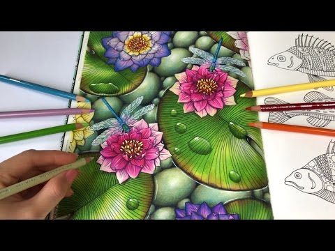 Water Lilies - Part 2   Daydreams Coloring Book by Hanna Karlzon