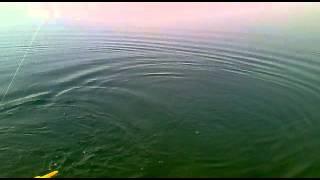 Рыбалка в Таджикистане Хистеварз Мизочон