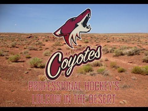 The Arizona Coyotes: Professional Hockey's Lolcow in the Desert
