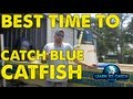 Best Time To Catch Blue Catfish [CQT]
