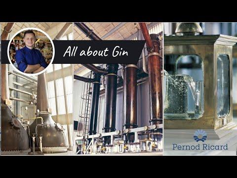 История возникновения Джина (All About Gin - Vlad Romanishyn)