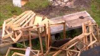 Bears visit Bee Hives
