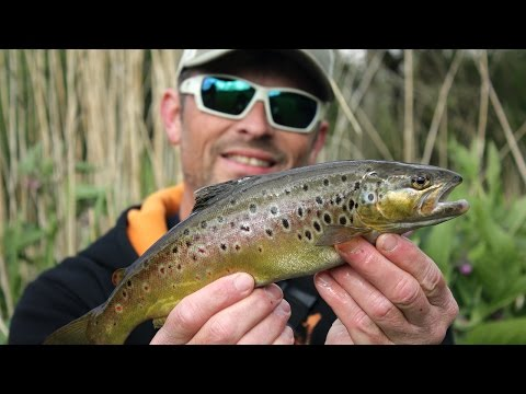 Urban Lure Fishing -  Wild Trout on Spinners and Soft Plastics!!