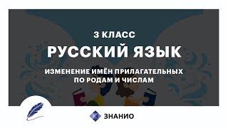 Русский язык | 3 класс | Изменение имен прилагательных по родам и числам | Урок 19 | Знанио