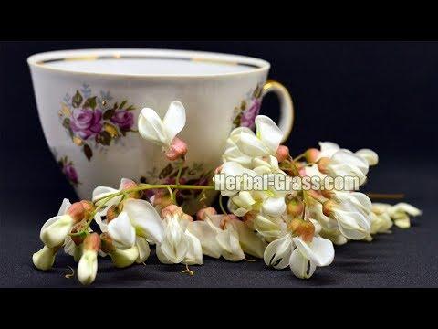 Акация белая гроздья душистых цветков, чай из цветов акации лечебные свойства