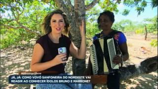 Download lagu Vovó sanfoneira que vende castanhas conhece ídolos