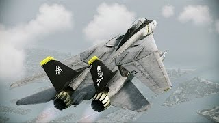 aerospace center aerial defense   f 14d jolly rogers   s rank   ace combat infinity co op