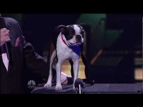 Todd Oliver, Top 48 Live ~ America's Got Talent 2012 Q1.mp4 Talking Dog
