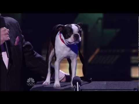 Todd Oliver, Top 48 Live ~ America's Got Talent 2012 Q1.mp4 Talking Dog