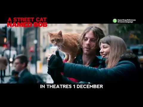 A Street Cat Named Bob 30s TV Spot