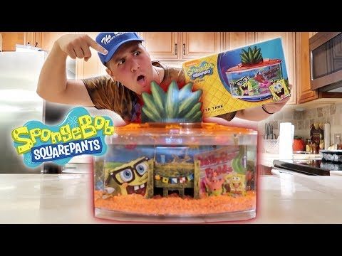 SPONGEBOB THEMED FISH AQUARIUM KIT!! **LIVE FISH**