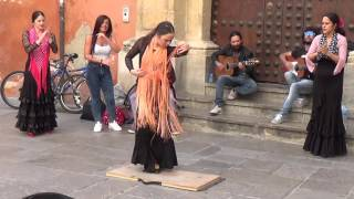 Flamenco dance (5) in Granada 2015