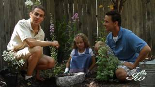 How To Plant A Butterfly Garden With Your Kids