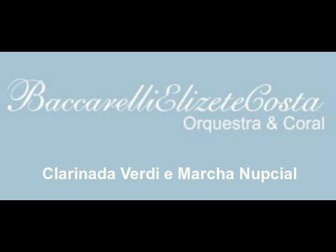 Baccarelli Elizete Costa