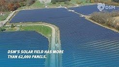 DSM North America expands solar field