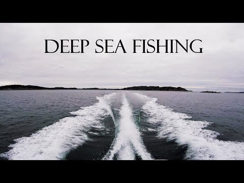 Winter Deep Sea Fishing Austevoll, Norway
