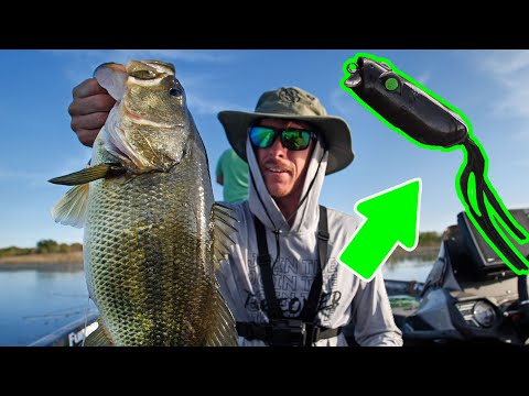 Amazing Spring Frog Fishing! ( Blessed Day )