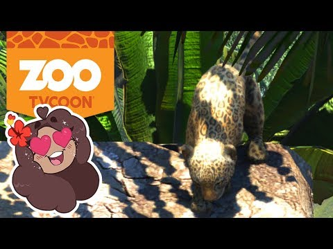 Baby Leopards on Slides?! Too Cute!! 🦁 Zoo Tycoon: Ultimate Animal Collection • #5 |