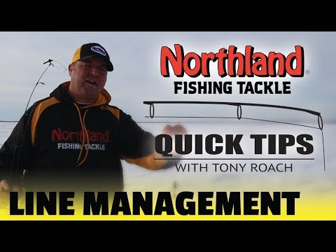 Quick Tips - Line Management - Tony Roach