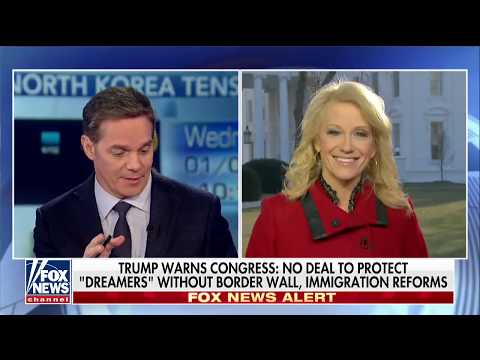 Fake News Awards? Conway Backs Up Trump's Tweet on Naming Media's 'Most Dishonest'