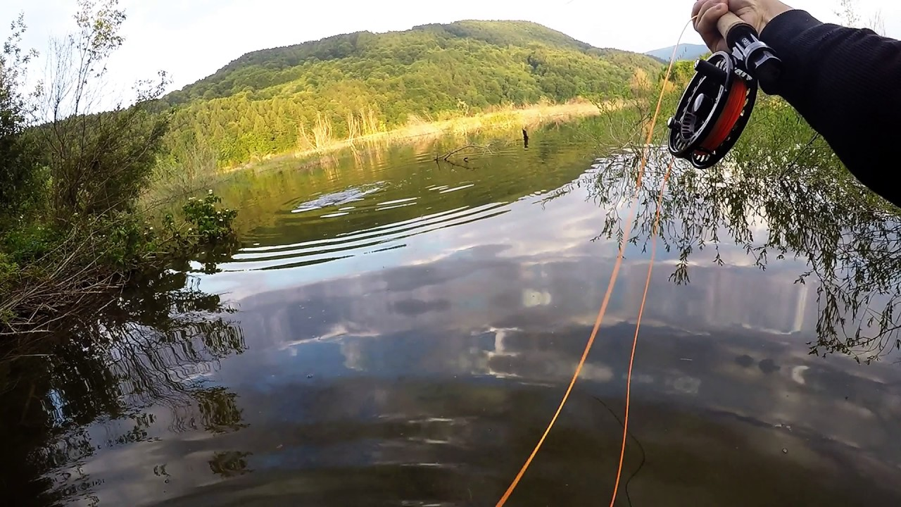 Fly fishing 2017 pescuit la musca youtube for Fishing license for disabled person