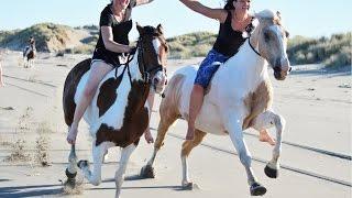 alycia burton free rider 2015 dvd trailer