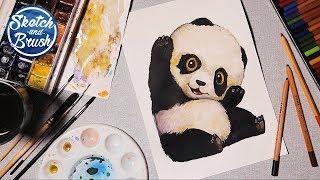Уроки рисования: Как нарисовать панду. Как рисовать акварелью.