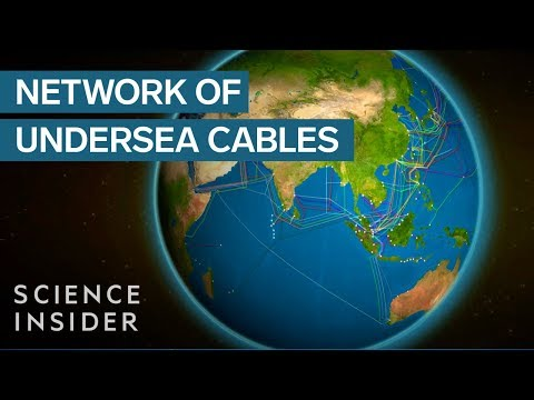 Animated map shows the undersea cables that power the internet