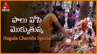 Nagula Chavithi Special Devotional Songs | Palu Vosi Mokkutunna Naganna Telangana Folk Song